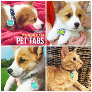 pet tags, personalized pet tags, monogrammed pet tags, dog tags, cat tags,, BLACK FRIDAY SALE